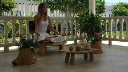 Arya Meditation